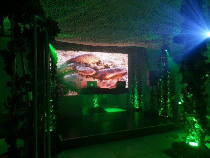 jungle Party pics 012