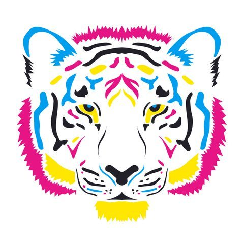 Medium Backdrop - Coloured Tiger