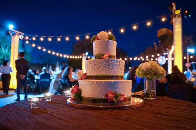 outdoor festoon lighting wedding cake