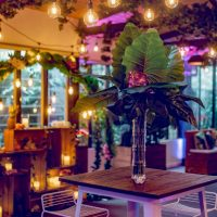 Feel Good Events - Tropical Theme at Melbourne Zoo jungle