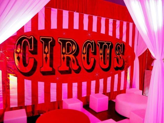 Large Backdrop - Circus