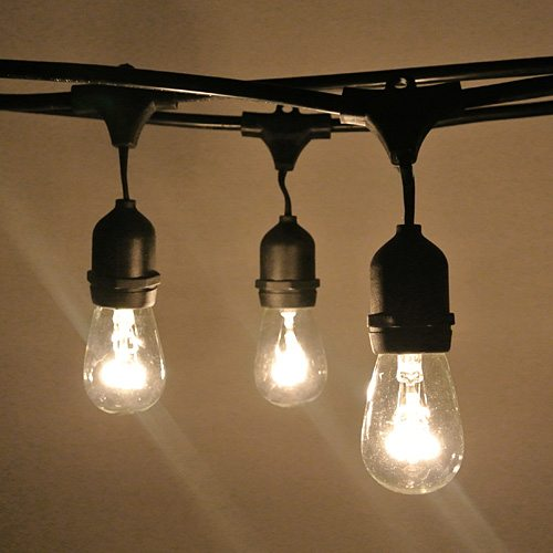 String Of Lights Do Not Work : Vintage Style Festoon Lights Hire Feel Good Events Melbourne