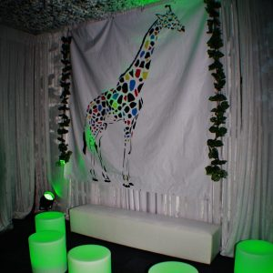 Medium Backdrop - Giraffe With Coloured Spots