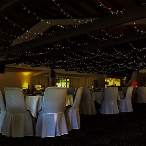 Potters Receptions - Warm White Fairy Lights
