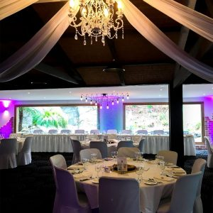 Potters Receptions - Purple Uplighting