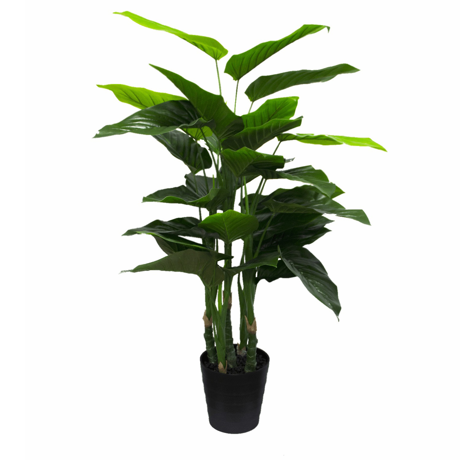 Artificial Philodendron Plant. Add some life and greenery to your event space with this large-sized artificial leafy potted plant.