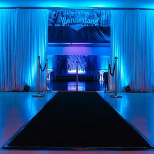 Winter Wonderland Entrance with Draping and Black Carpet