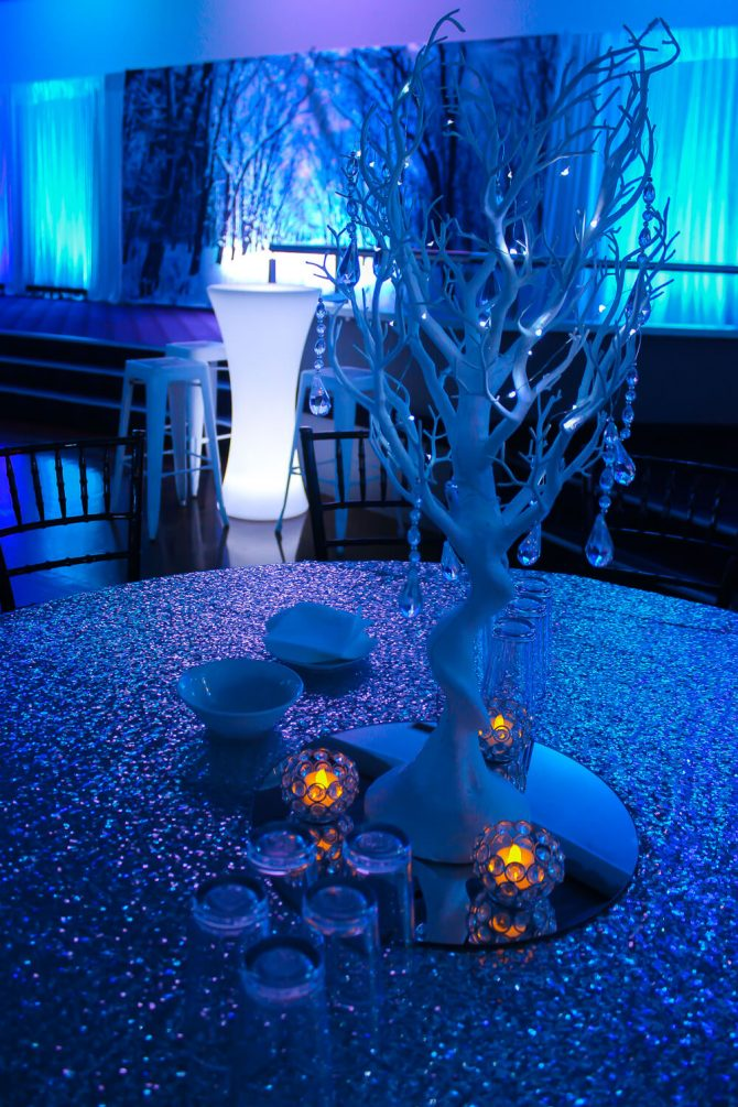 Winter Wonderland Prop Hire Melbourne
