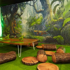Enchanted Forest Theme Kids Play Area with Backdrop Hire