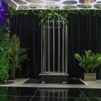 dance cage hire melbourne in jungle theme
