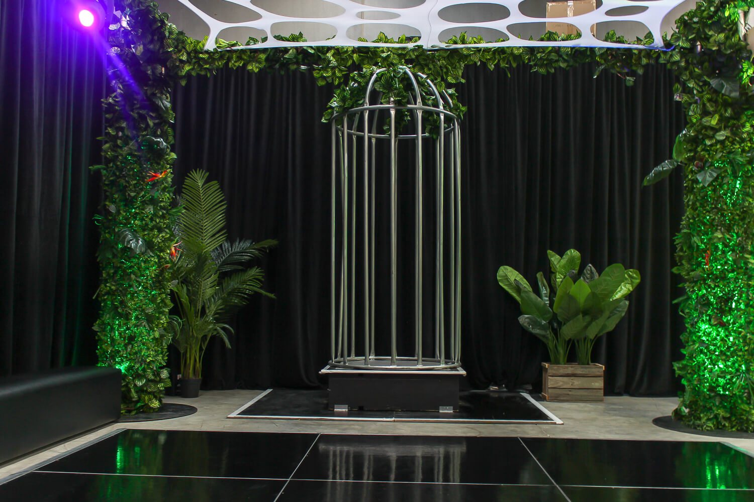 dance cage hire melbourne in jungle theme
