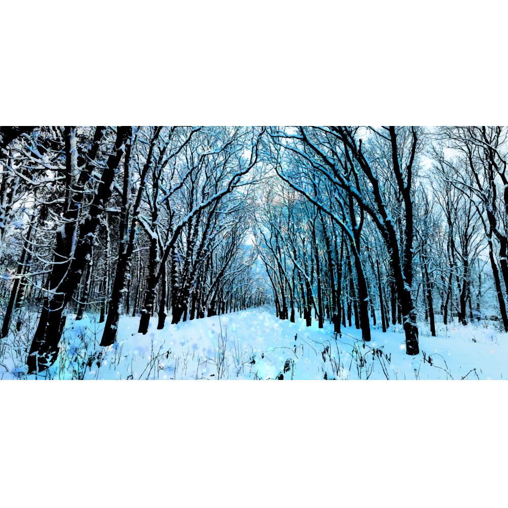 Large Winter Forest Backdrop Hire Melbourne