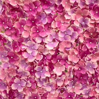 Artificial Rose Wall