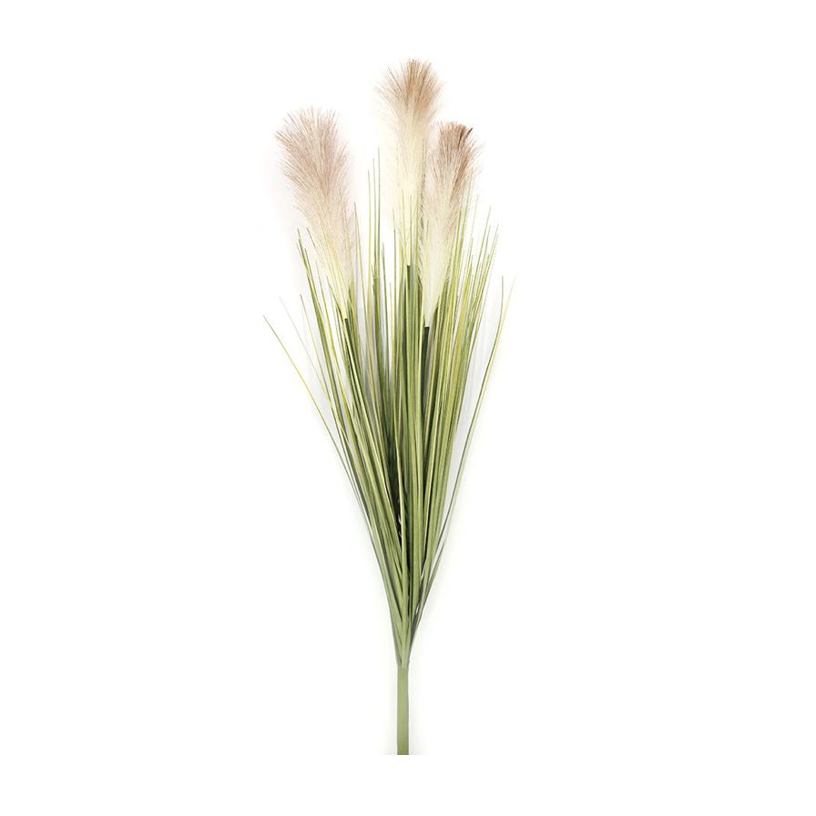 Pampas-Grass-Hire